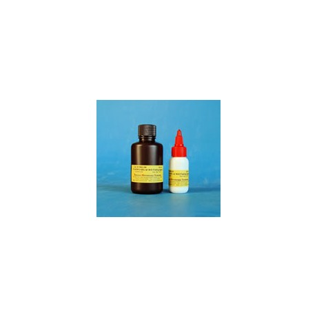 Fluoro-Gel with Anti-Fading Mounting Medium